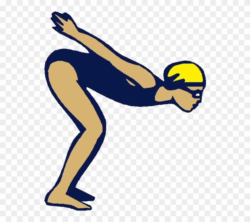 Ajcc swimming dive cartoon. Diver clipart pool