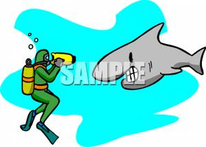 Diver clipart swim with shark. A scuba taking video