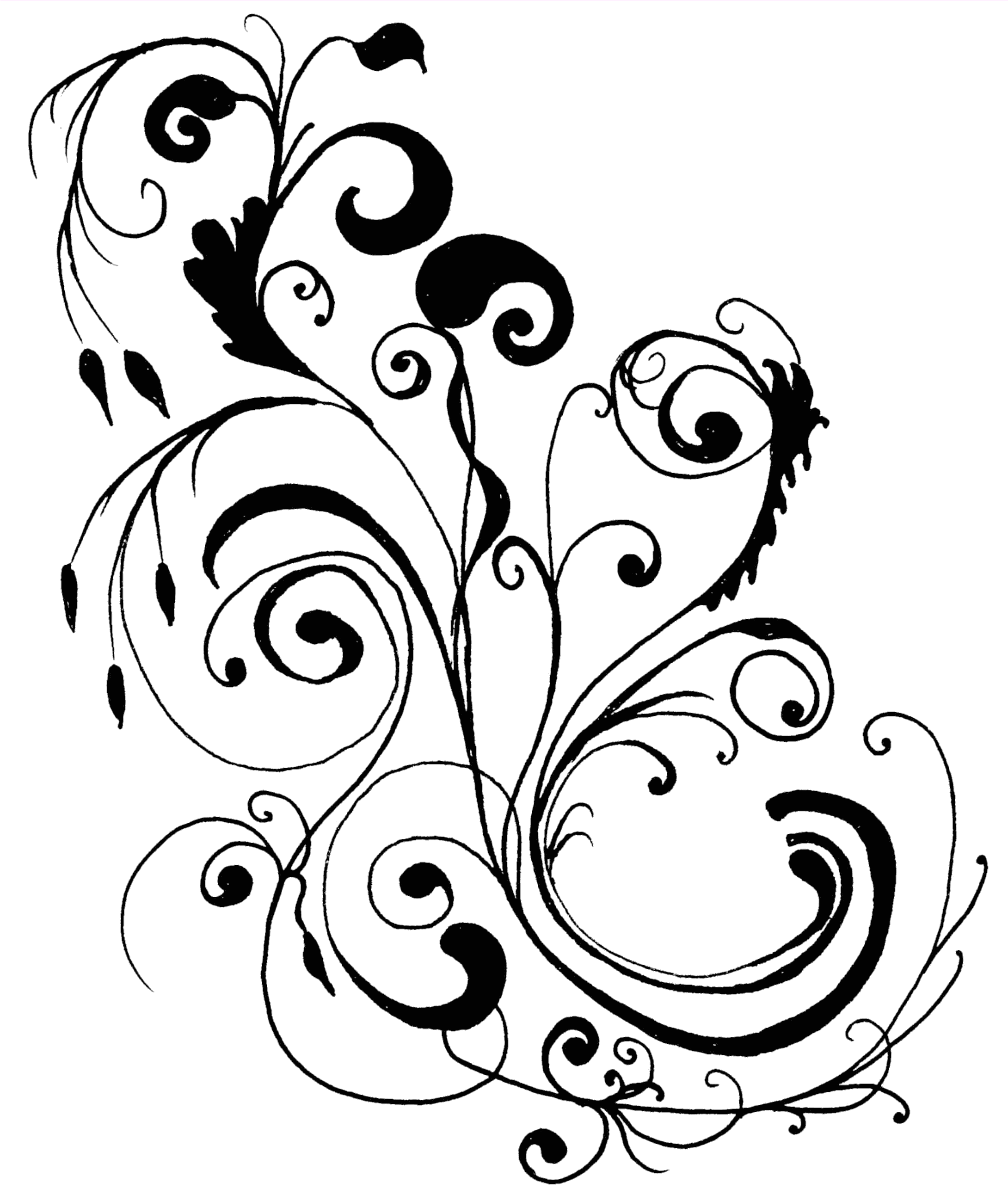 Paisley page border gallery. Filigree clipart fancy