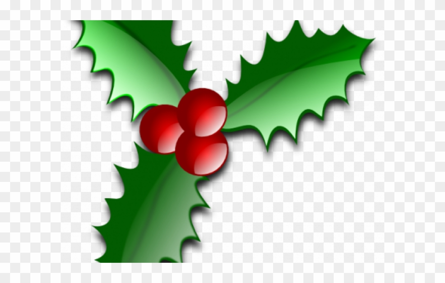 Holly clipart page divider. Holley christmas png
