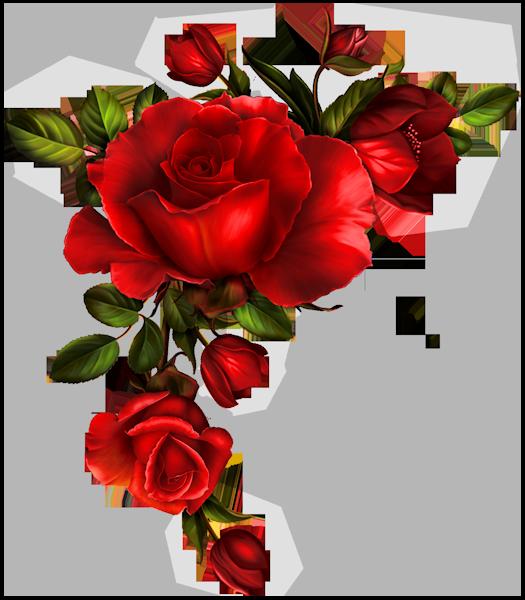 christine staniforth frame. Divider clipart rose