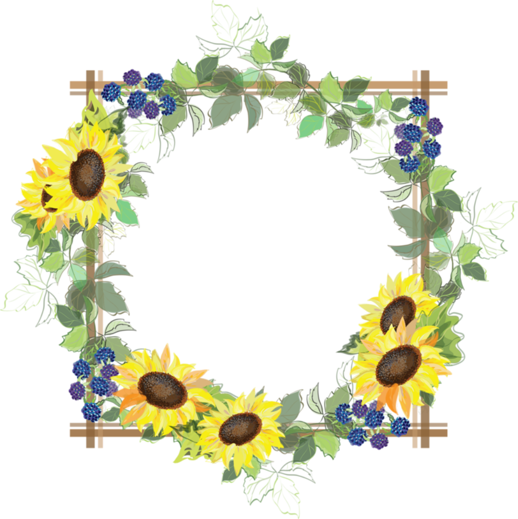Divider clipart sunflower, Divider sunflower Transparent ...