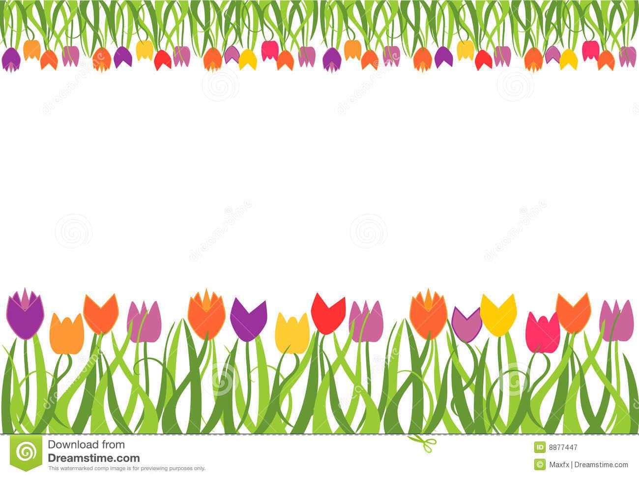 Divider clipart tulip. Tulips border portal