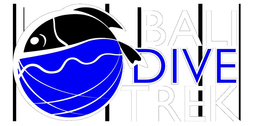Diving clipart diver navy. Bali scuba course dive
