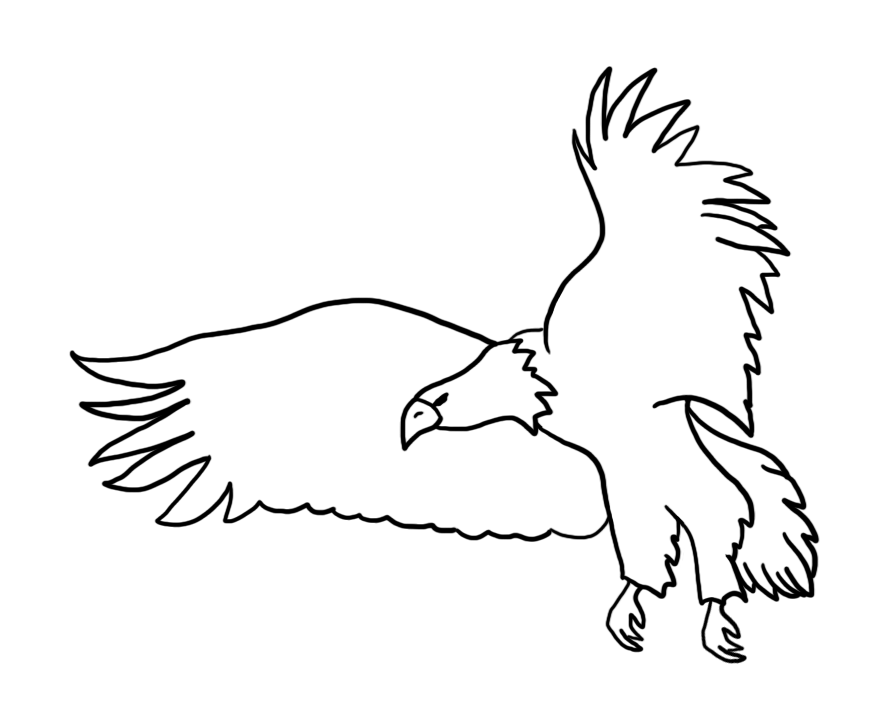 Bald drawings flying . Eagle clipart outline