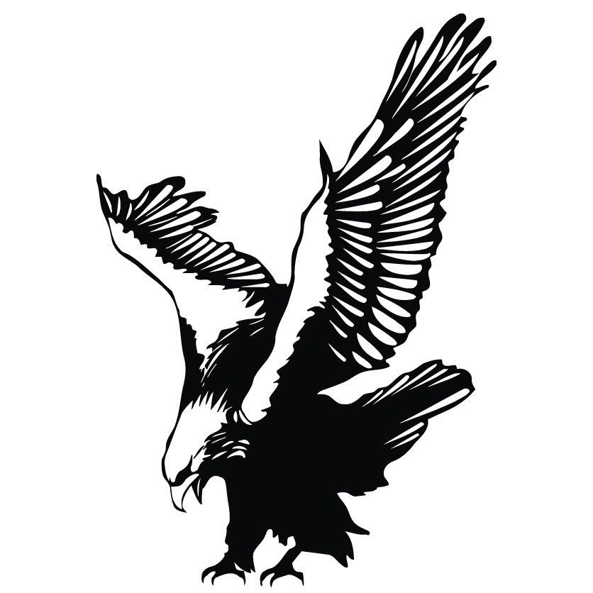 Pin on plamsa . Eagle clipart diving