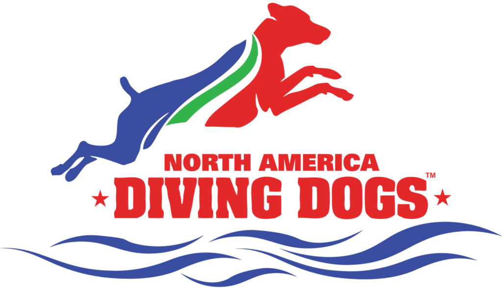 Diving splash