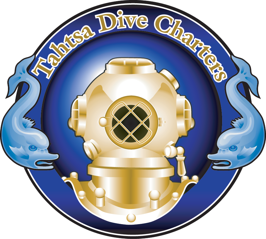 Diving clipart water clipart. Tahtsa dive charters adventure