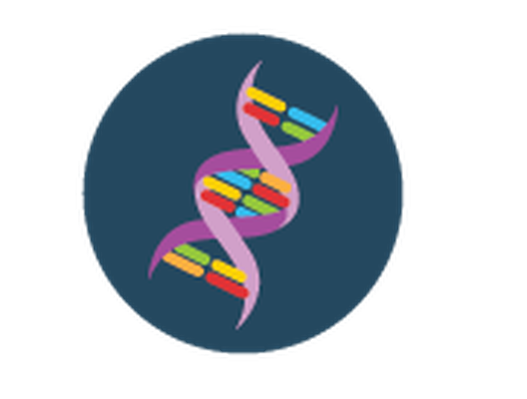 Dna clipart. Science icons yellow and