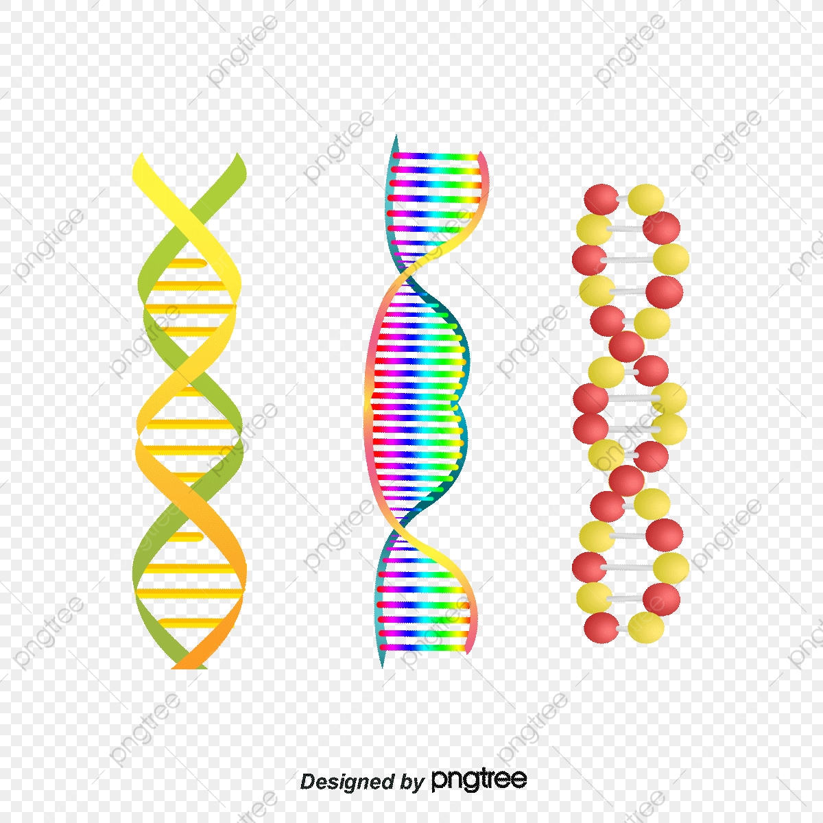 Structure picture biotechnology genetic. Dna clipart biotech