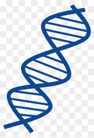 Dna clipart clipart transparent background. Png images free download