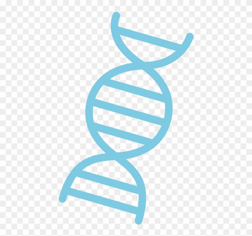 Dna clipart dna sequence. Logo sequencing pinclipart