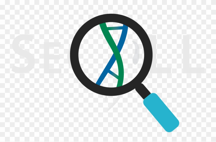 Dna clipart dna sequence. Seqll rna sequencing au