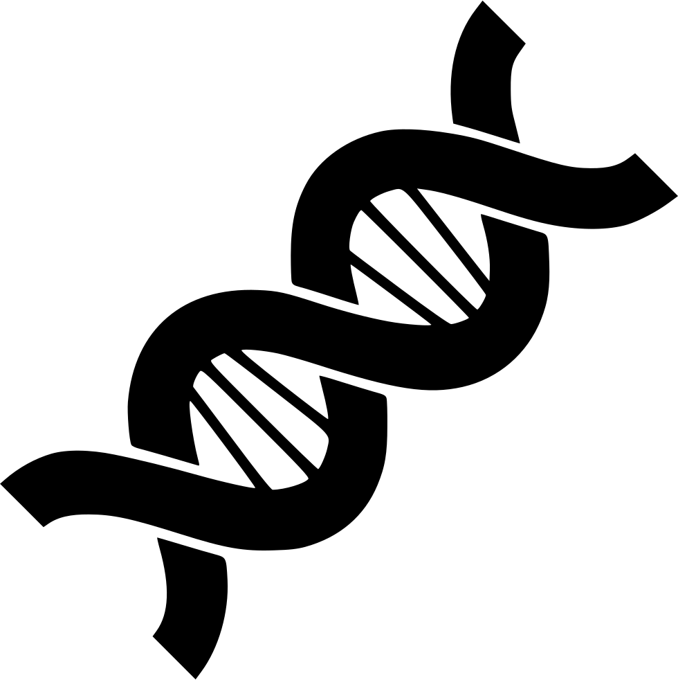 dna clipart dna structure