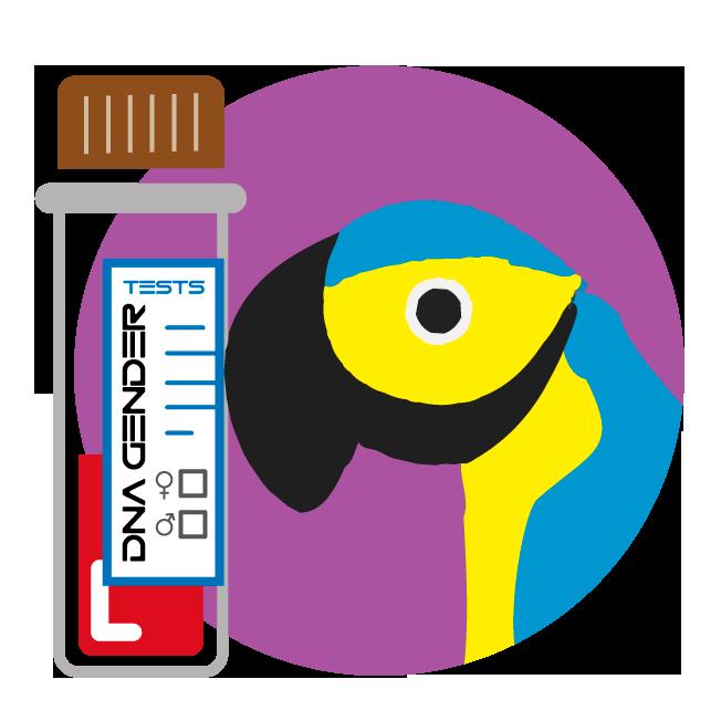 Sample collection bird iqbirdtesting. Dna clipart dna test