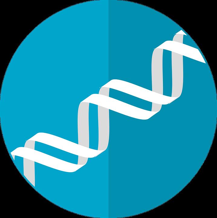 Dna clipart heredity. Gene desktop backgrounds free