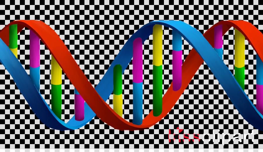 Dna clipart heredity. Double helix genetics biology