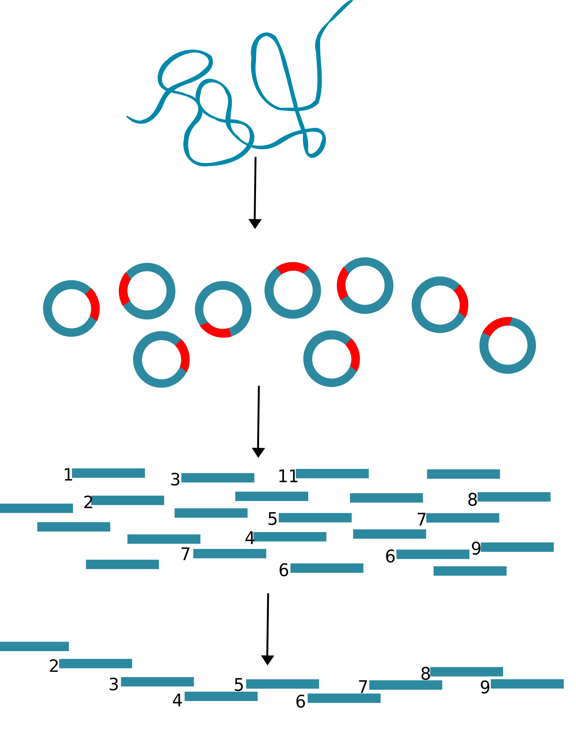 Cloning icons png free. Dna clipart line