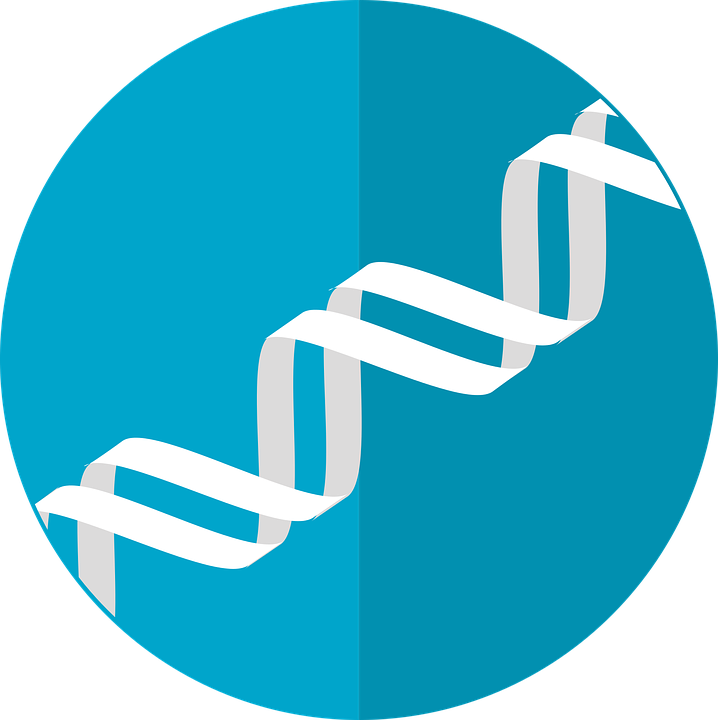 Dna clipart nature science. Zipping genetic data in