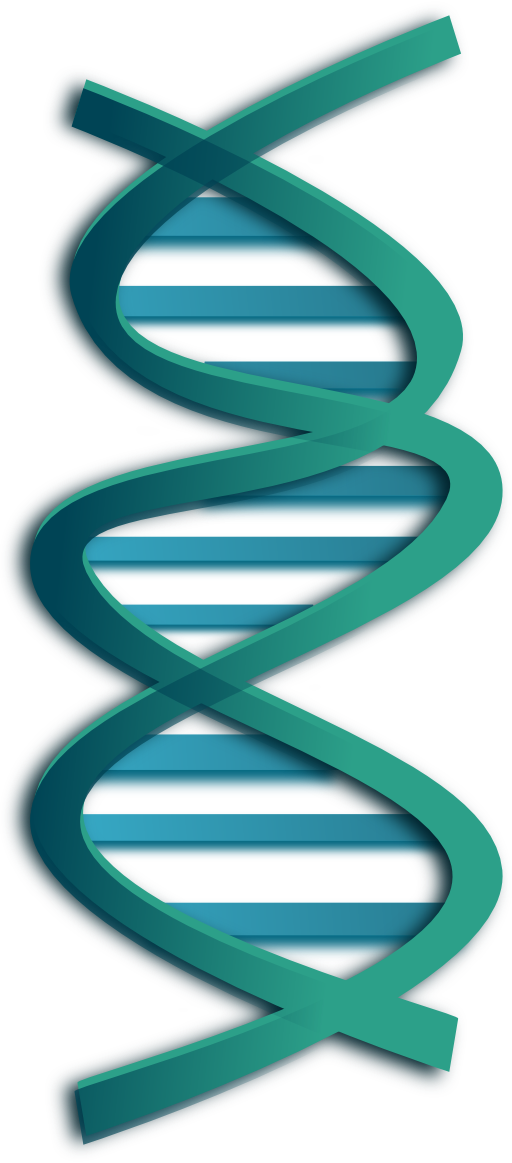 I royalty free public. Dna clipart stylized