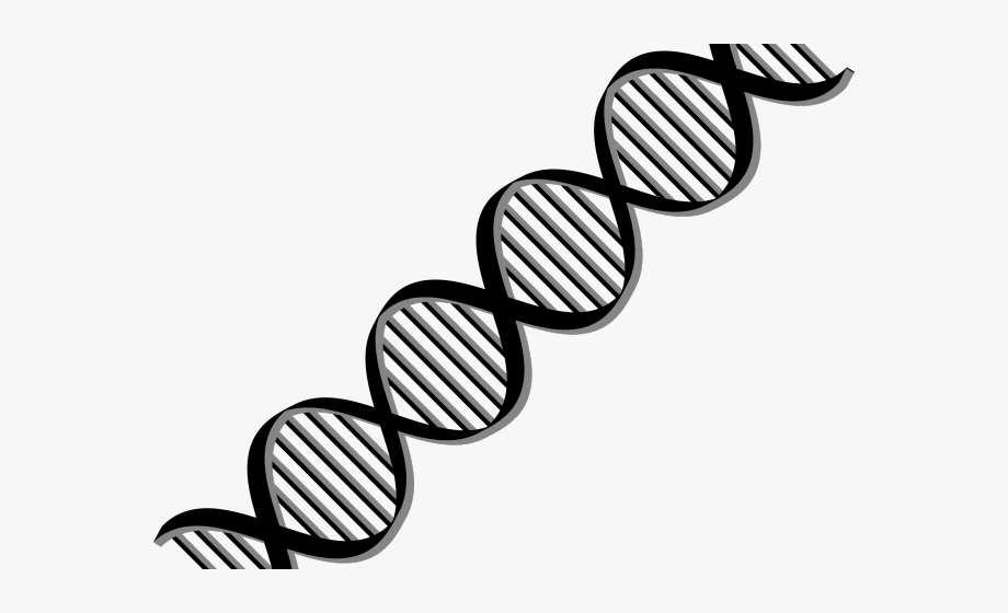 Structure transparent background . Dna clipart stylized