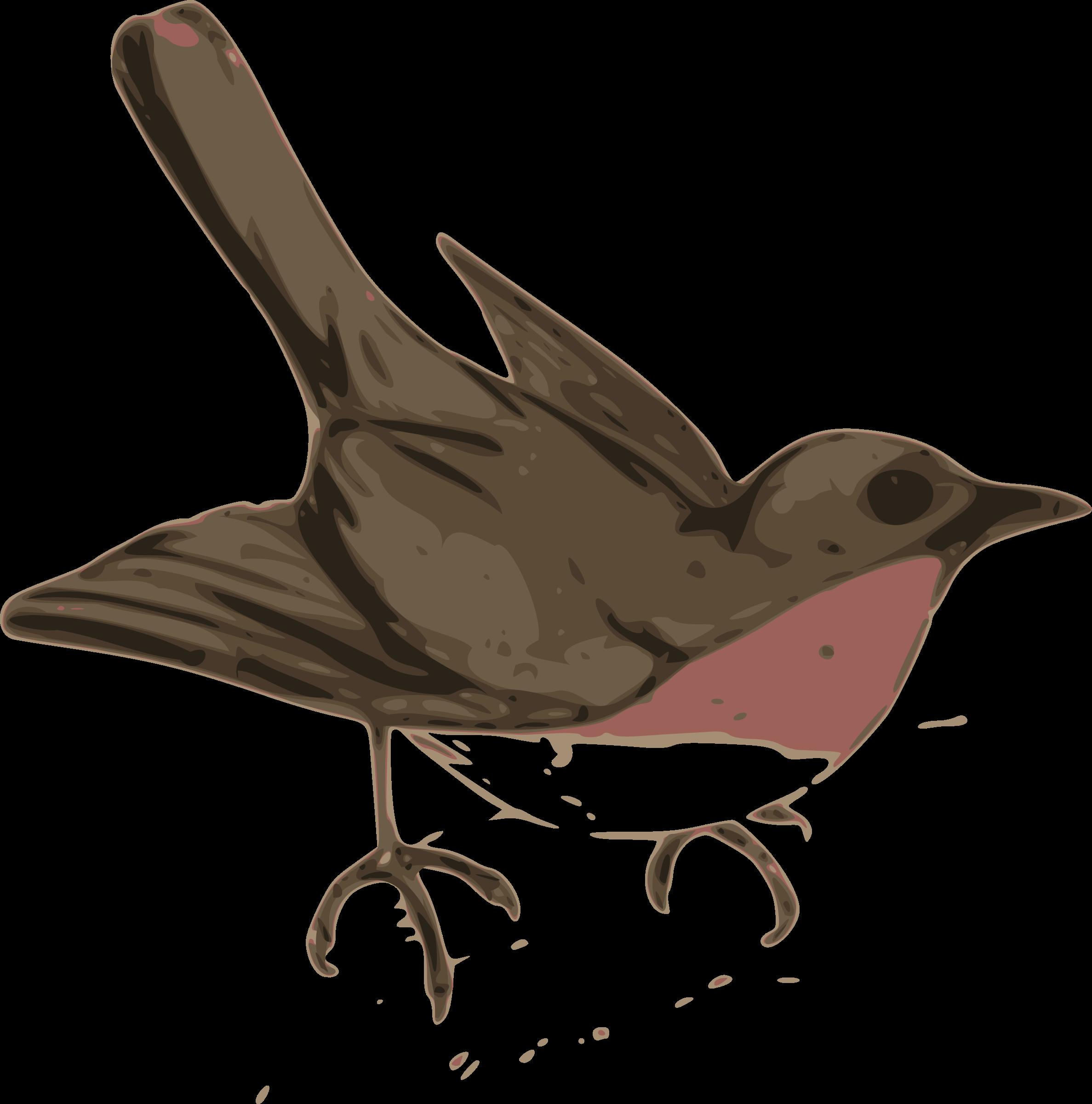 Doctor clipart bird. Of maya gucciguanfangwang me