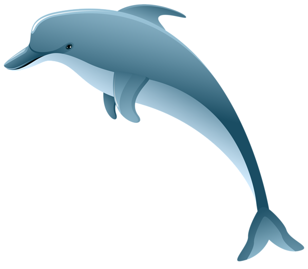 Gallery free pictures . Dolphins clipart ball