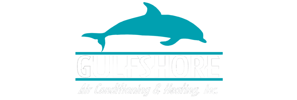 Gulfshore air conditioning and. Dolphin clipart beach florida