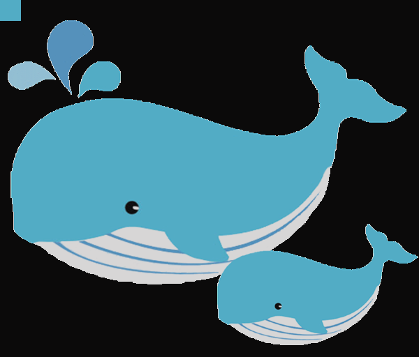 Dolphin Clipart No White Background