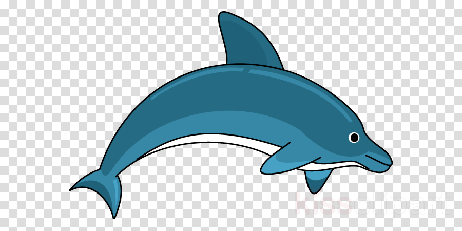 Dolphin clipart clear background. Fish cartoon illustration