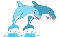 best images in. Dolphin clipart cool