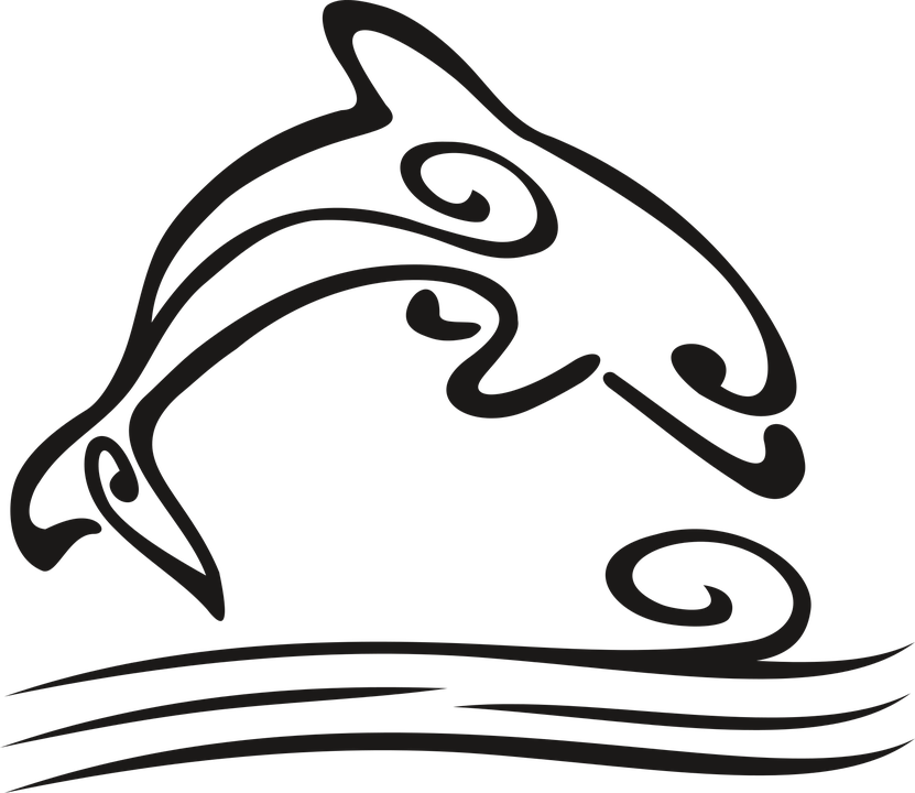 Dolphin clipart dolfin. Cliparts shop of library