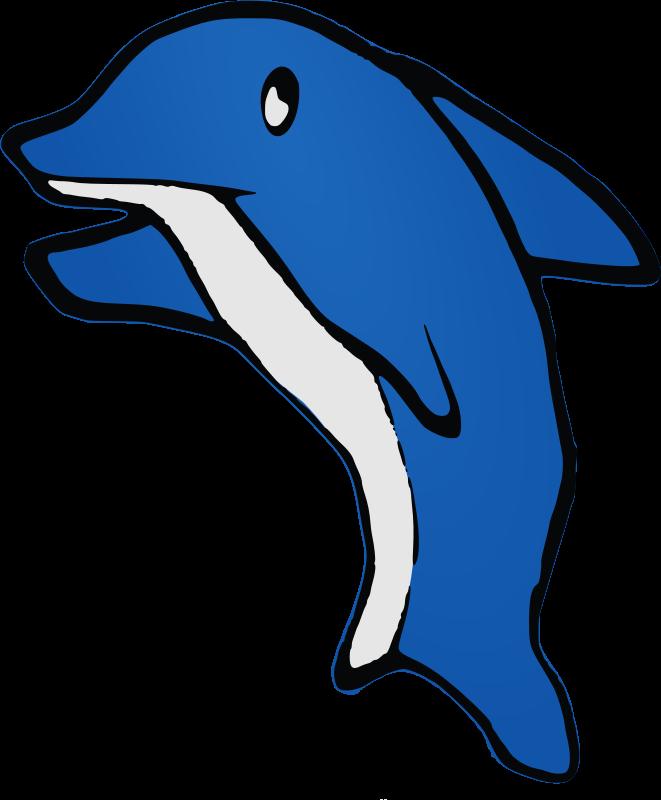 Dolphin clipart dolfin. Medium image png