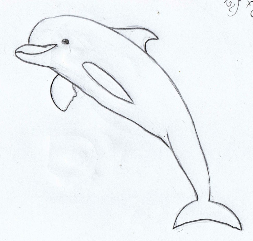 drawing for free. Dolphin clipart dolfin