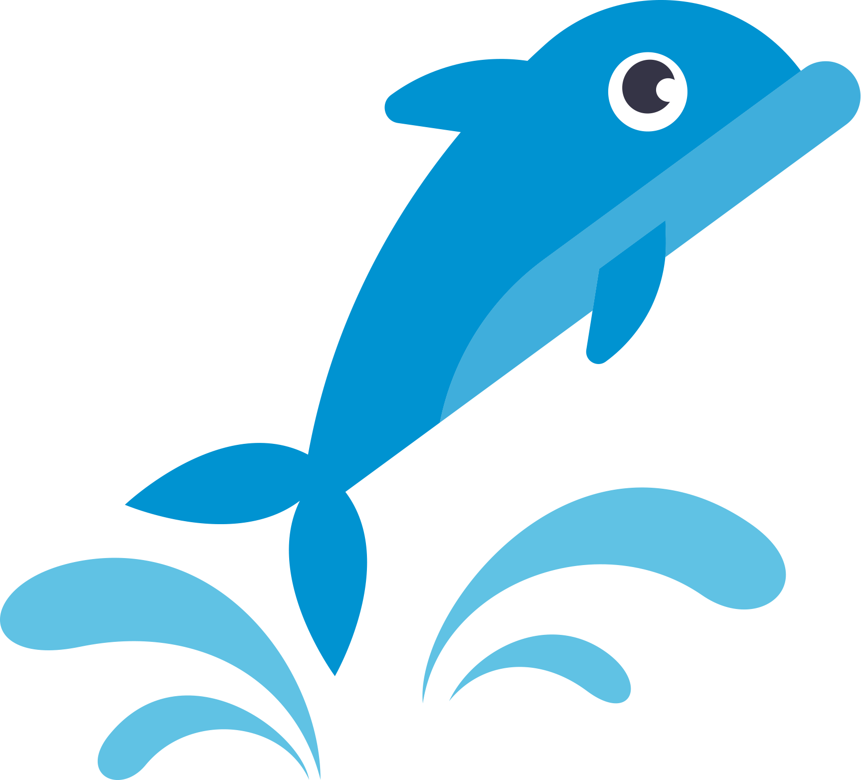 Dolphins years swim school. Dolphin clipart dolphin face