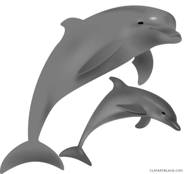 Bottlenose clipartblack com animal. Dolphin clipart gray dolphin
