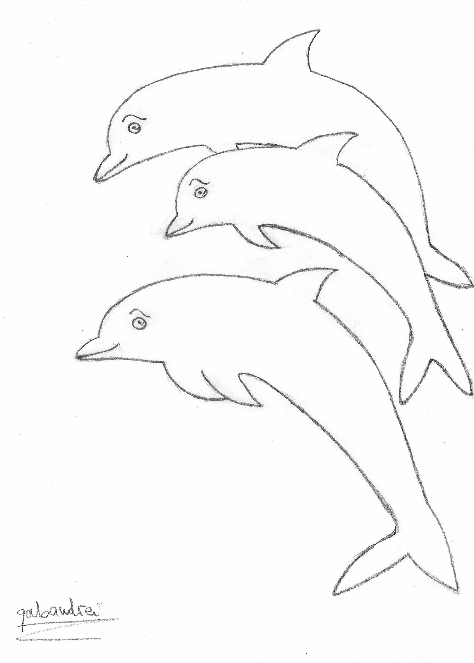 dolphins clipart group dolphin