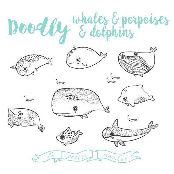 Dolphin clipart hand drawn. Whale porpoise vector