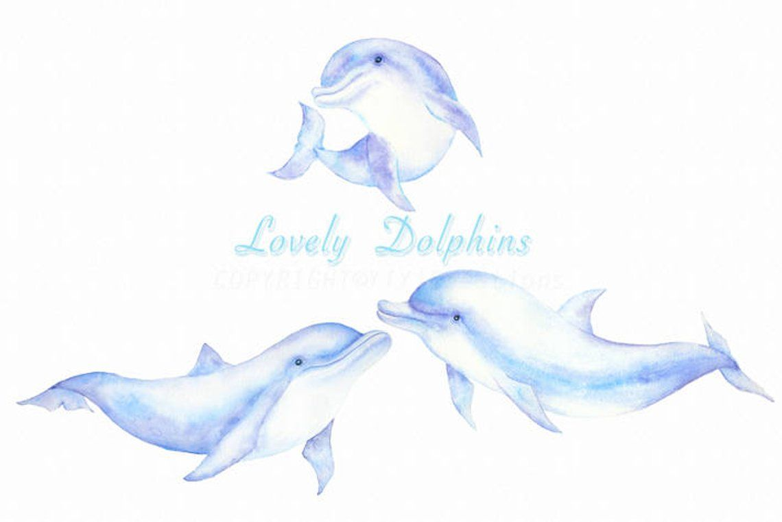 Dolphin clipart hand drawn. Watercolor painted sea creature