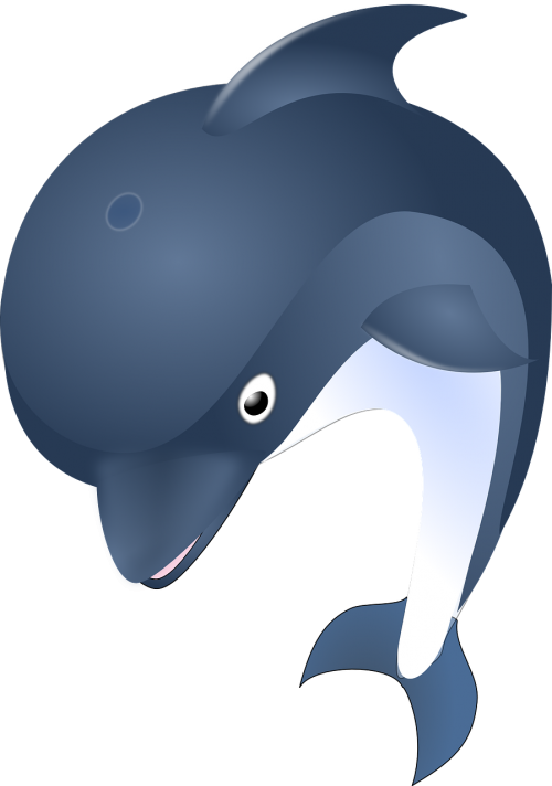 Baby bottle milk drink. Dolphin clipart illustrator