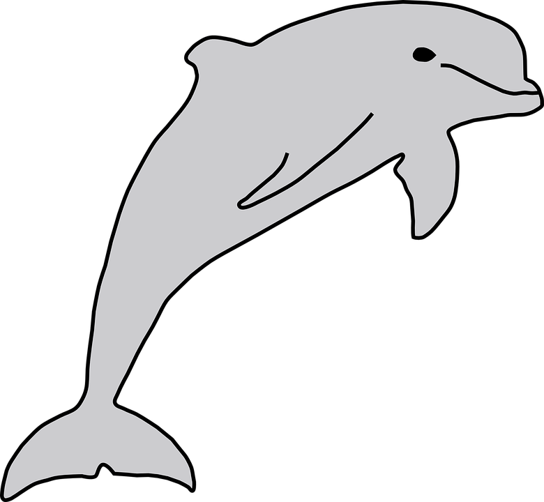Dolphin clipart line. Collection of drawing buy