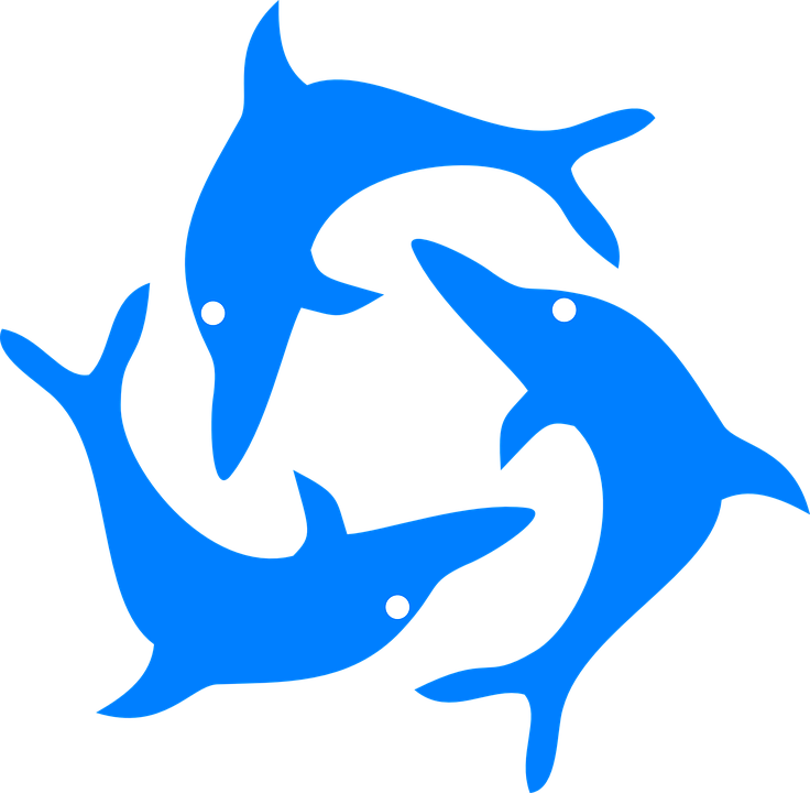 Dolphin clipart line. Free download best on
