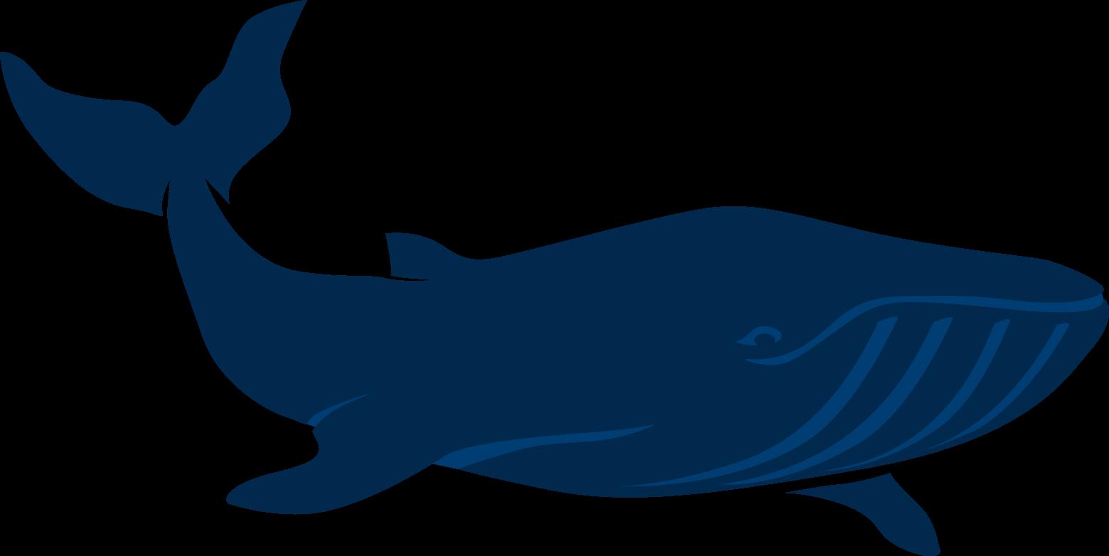 Pediatric dentistry of greenwood. Dolphin clipart marine biology