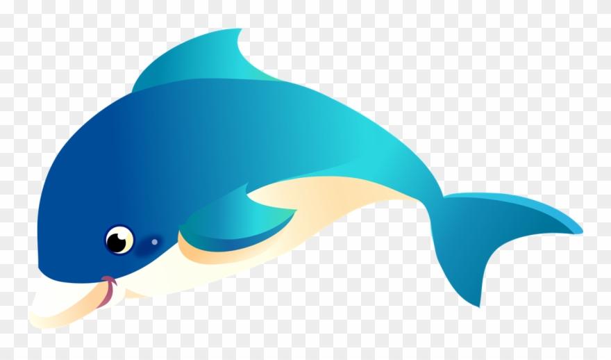 Dolphin clipart marine biology. Sea life baby transparent