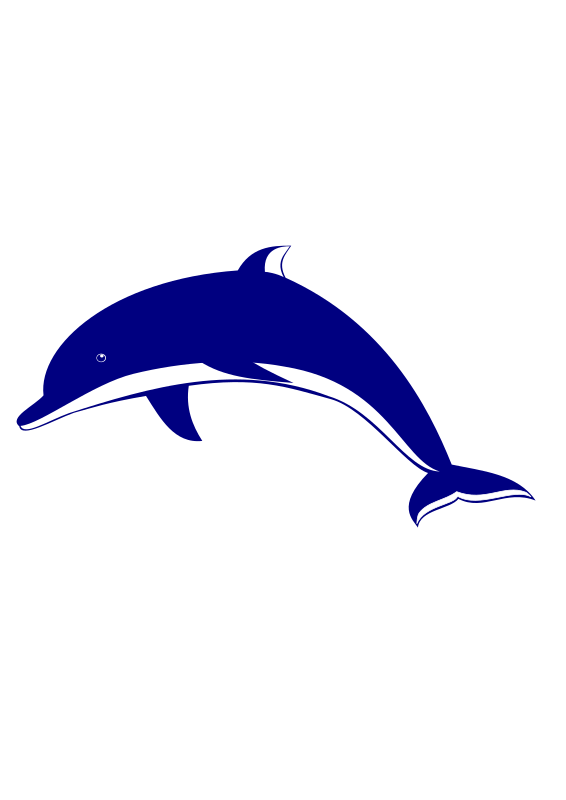 Dolphin clipart maui dolphin. Wallpapers png v pictures