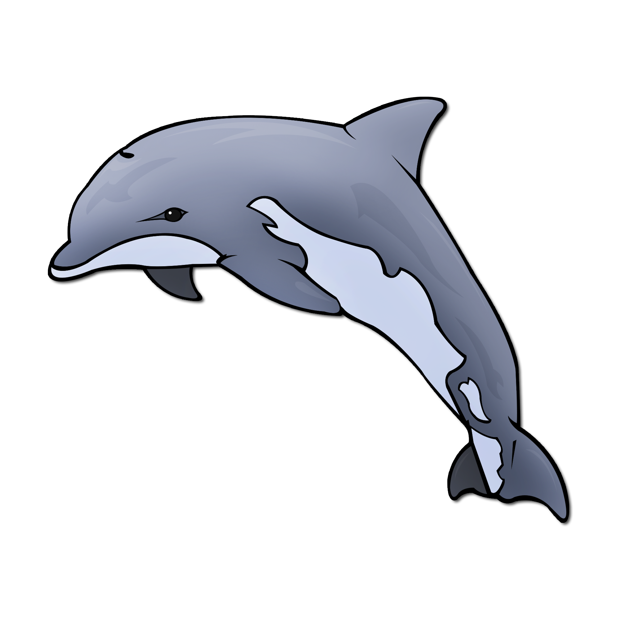 Dolphin clipart maui dolphin. Picturae database detail download