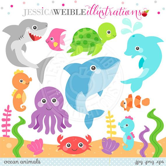 Dolphin clipart ocean life. Animals cute animal graphics