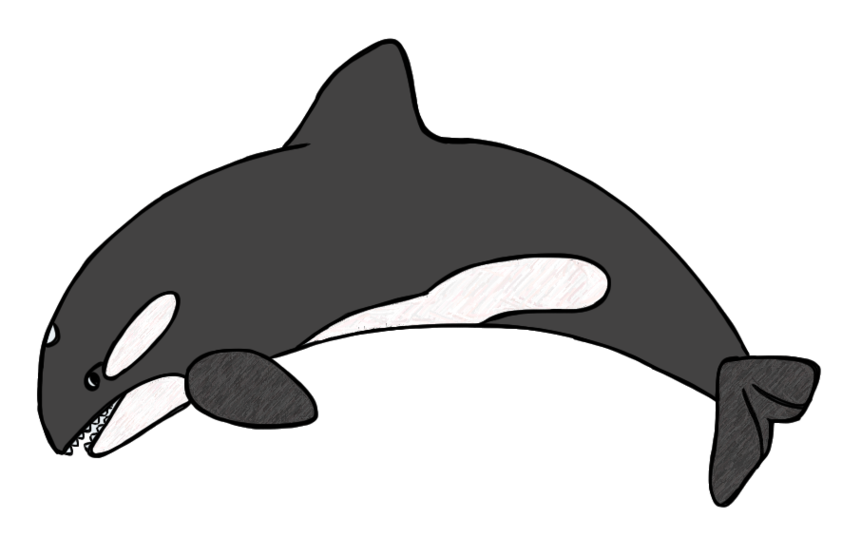 Dolphins free download best. Dolphin clipart printable