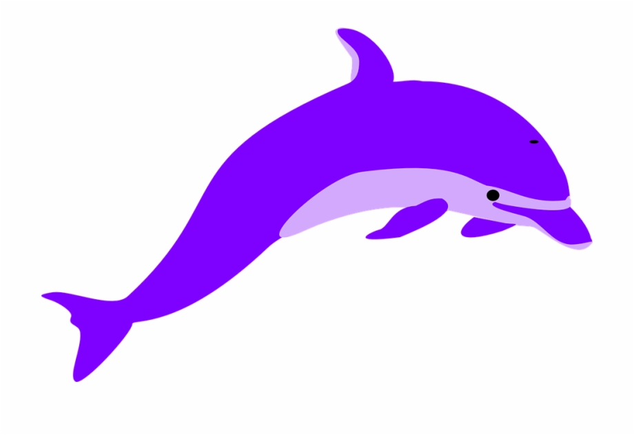 Free png images download. Dolphin clipart purple