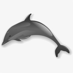 Bottlenose clip art . Dolphin clipart realistic